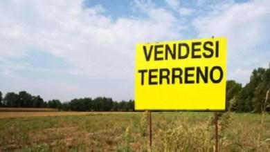 Photo of Plusvalenza vendita terreni: inerente il costo sostenuto per l'acquisto dei terreni limitrofi