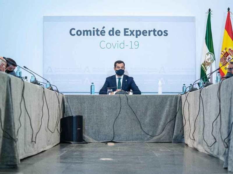 comité de expertos