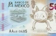 Así será el nuevo billete de 50 pesos