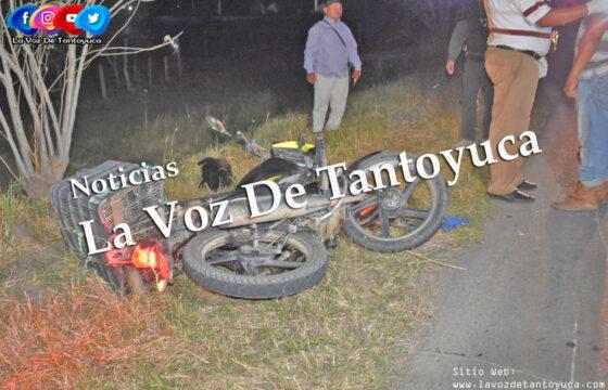 Motociclista resulta lesionado al atropellar a un perro y derrapar | LVDT