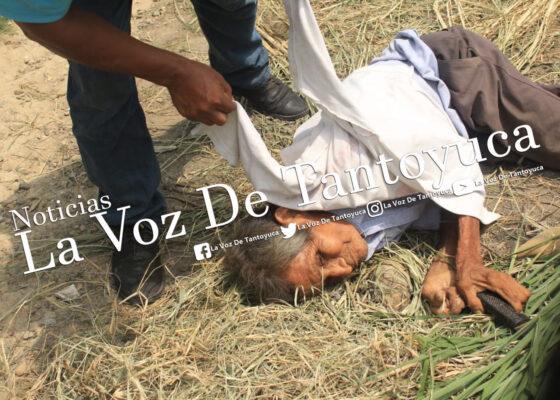 Fallece ancianito tras caer de un pequeño barranco | LVDT
