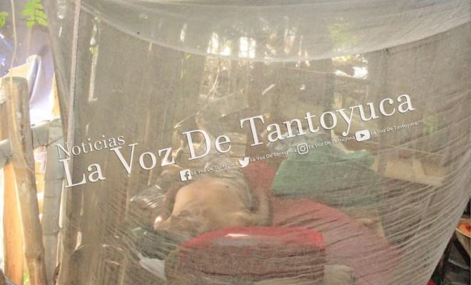 """Localizan a """"El Fierritos"""" sin vida en el tianguis de Tantoyuca   LVDT"""