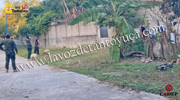 Detienen a mujer por ocasionar destrozos en Tantoyuca | LVDT