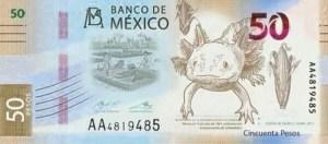 Así será el nuevo billete de 50 pesos | Red Social