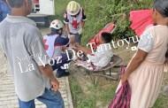 Niño resulta herido tras ser atacado por un cerdo, en Tantoyuca