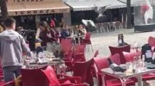 Resultado de imagen de LAS PALOMAS SE ADUEÑAN DEL CENTRO DE CADIZ