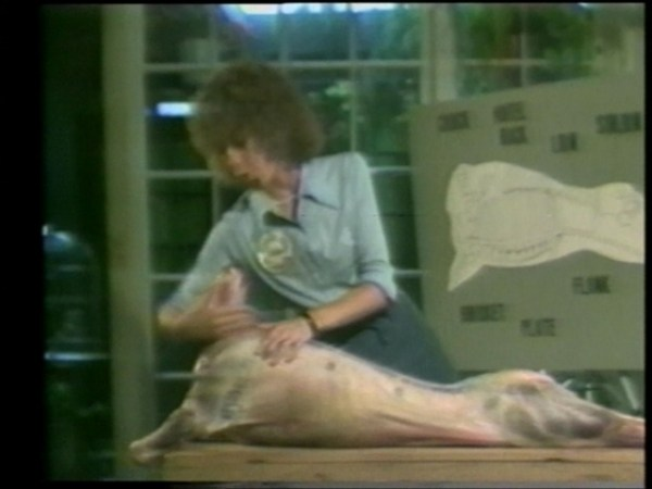 suzanne lacy learn where the meat comes from