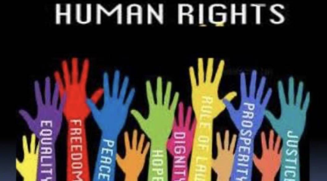 B75D5F73 7094 4F15 99E5 8E4E662A4948 ROLE OF NGOs IN PROTECTION OF HUMAN RIGHTS