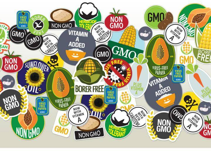 Genetic Engineering and Laws