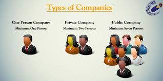 Definition and Characteristics of different types of Companies