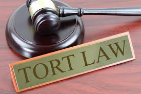 Law of Torts - its Essentials and Nervous Shock