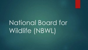 National Board for Wildlife - Constitution, Powers and Functions