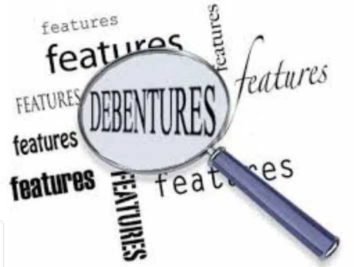 Debentures of a Company - Concept, Types, Advantage, Disadvantage