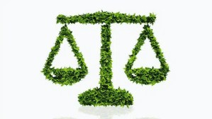 Judicial Activism and Environmental Protection in India