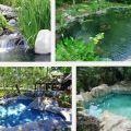 Crea un estanque para tu jardín 7