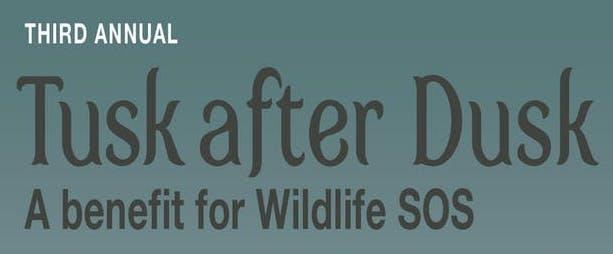 Tusk After Dusk – A fundraiser for Wildlife SOS