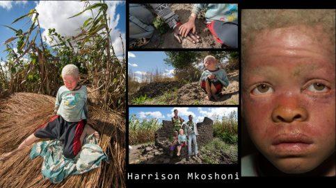 Harrison Mkoshoni