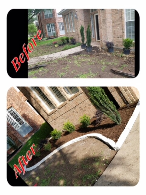 residential landscape before and after