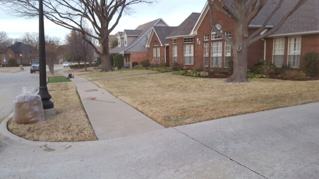 landscape cleanup by lawn and landcare in texas