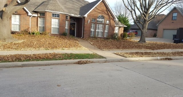 landscape cleanup by lawn and landcare texas