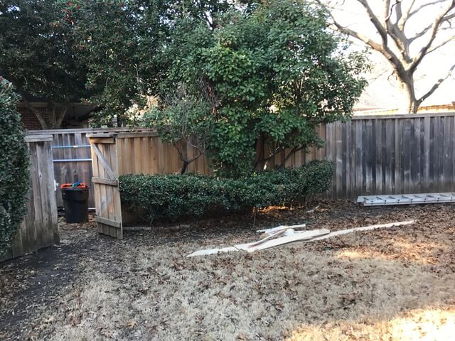 landscaping example for plano texas