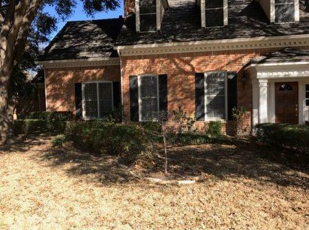 Landscape Design Plano TX dry lawn
