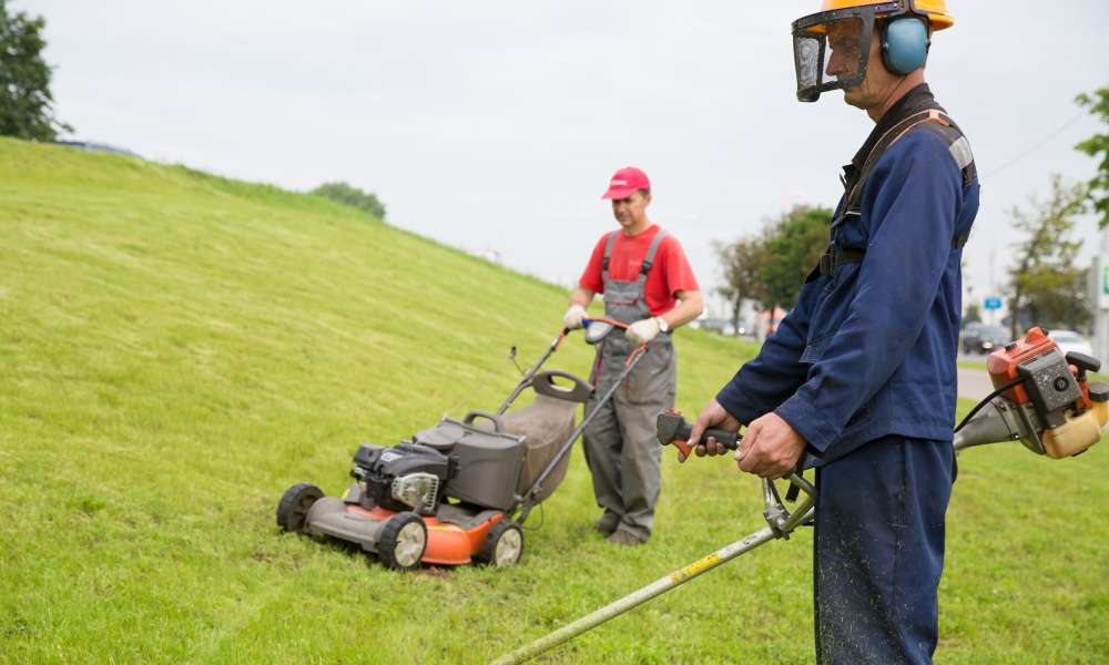 Best Lawn Edger Reviews Archives - Lawn Gear Guide