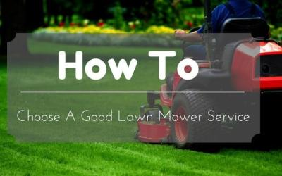 lawn-mower-services