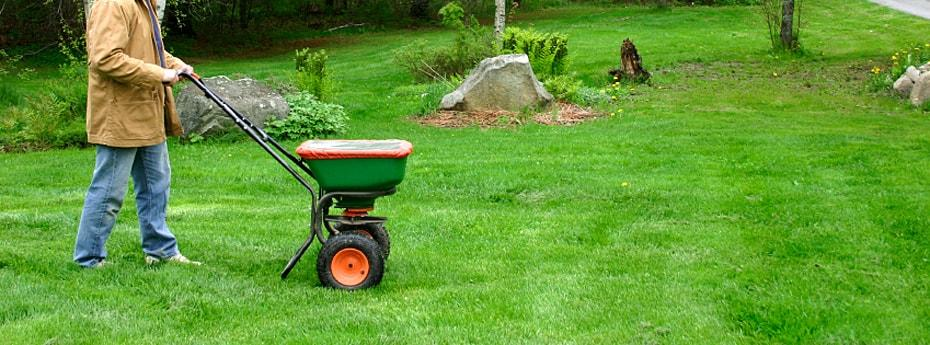 Basic-Lawn-Care-And-Maintenance-Advices-for-Beginners-5