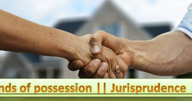 kinds of possession jurisprudence