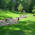lawn-maintenance-st-augustine-pic