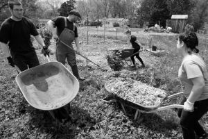 Community Orchard Workday