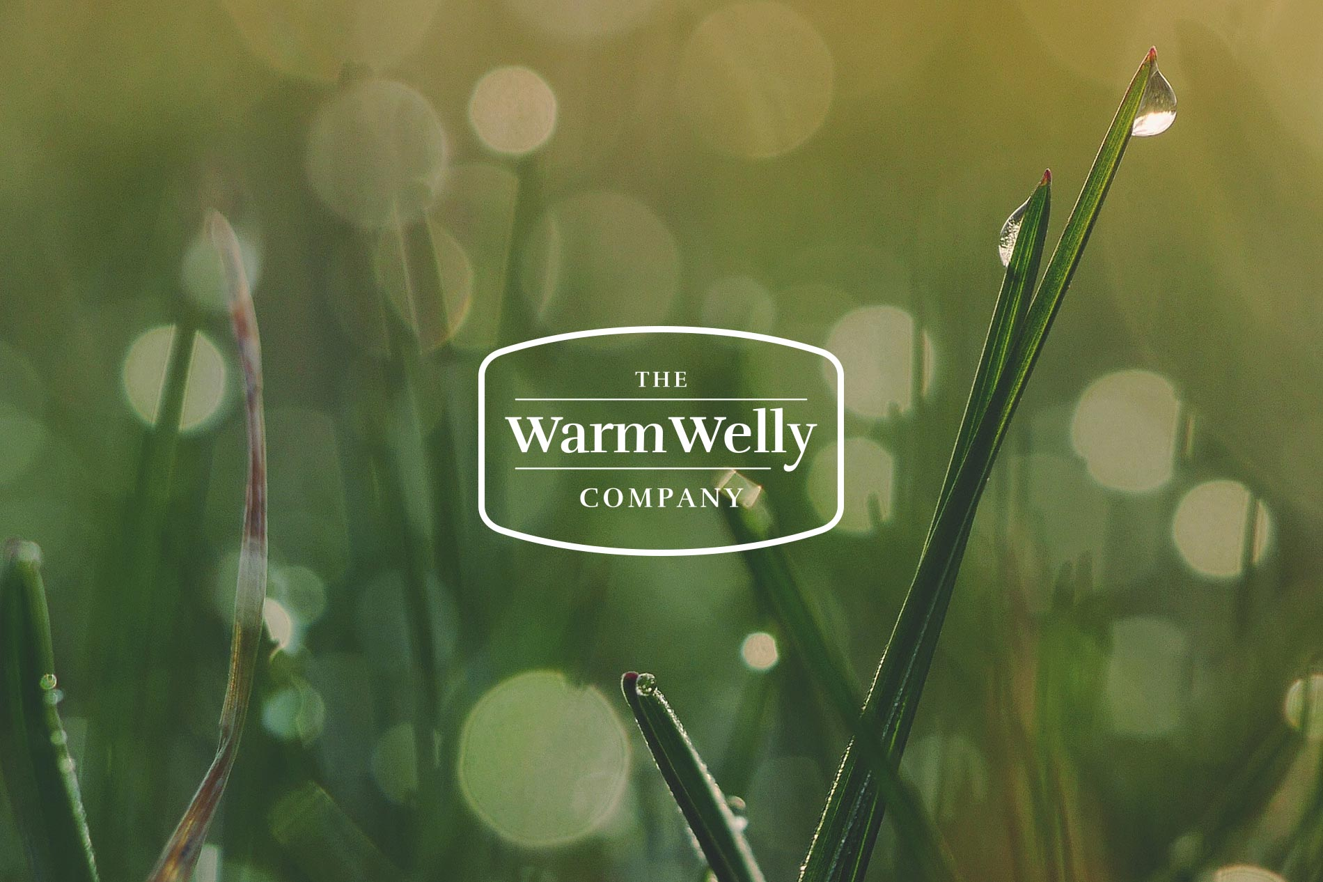 The Warm Welly Company Branding and Logo design