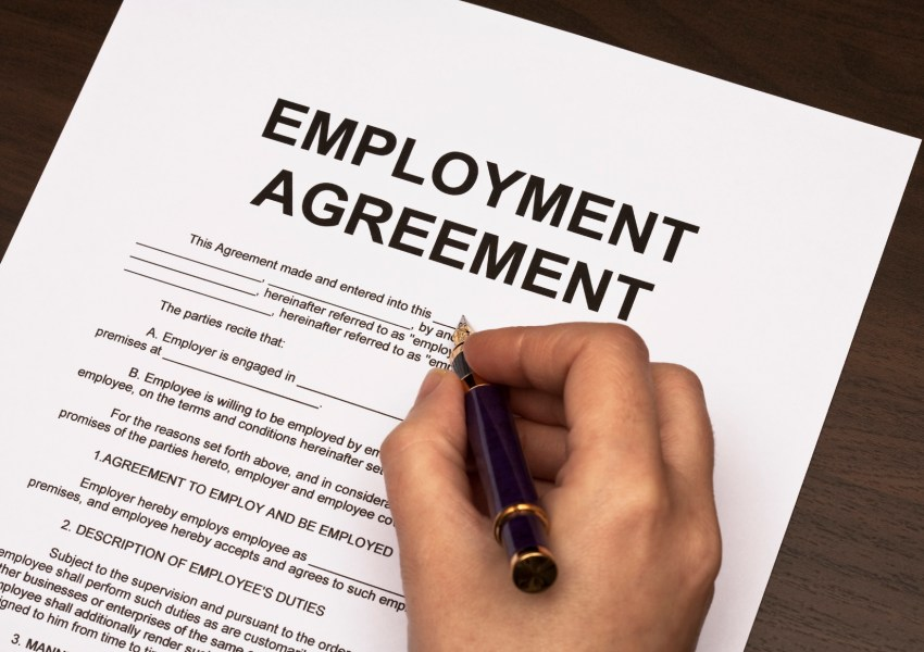 Access a Free Employment Contract Example   Lawyers Legal Forms and     Employment Contract