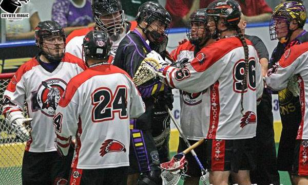 bill obrien box lacrosse