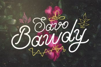 Savo Bawdy Typeface by Layerform Design Co