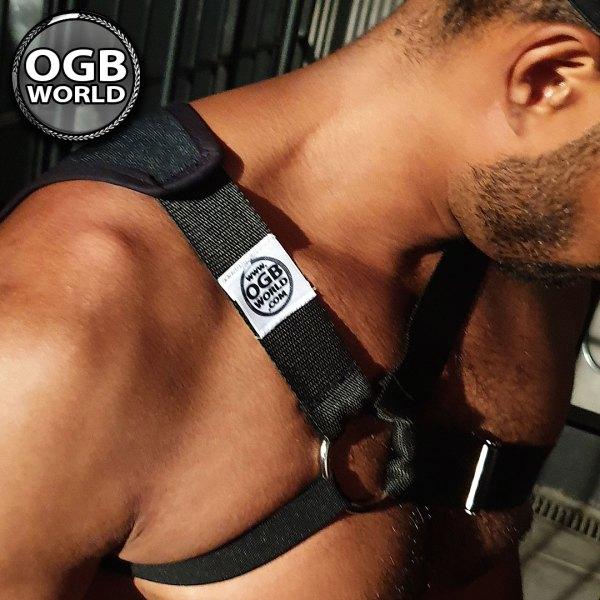 OGB-World-Fetish-ESH