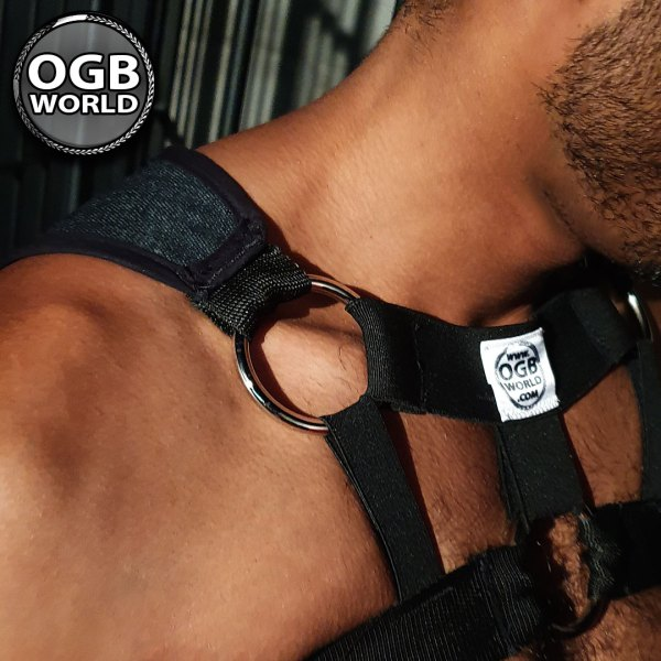 OGB-World-Fetish-ESM