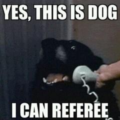 SA referees at the IeSF?