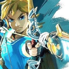 Link will never be female in The Legend of Zelda, says Miyamoto