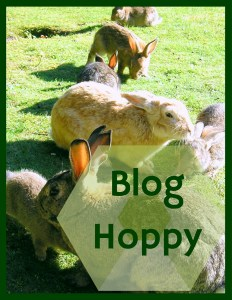 BlogHoppy