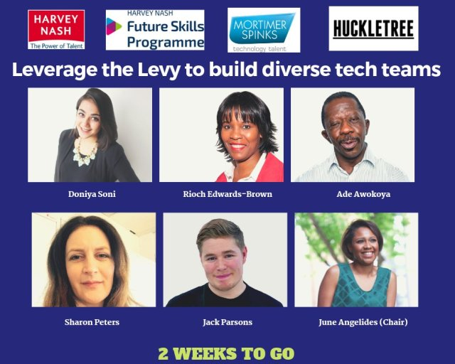 Leverage the Levy to build diverse founder teams