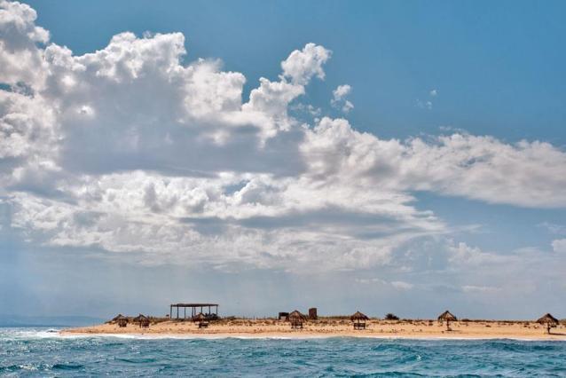 محمية جزر النخيل الطبيعية