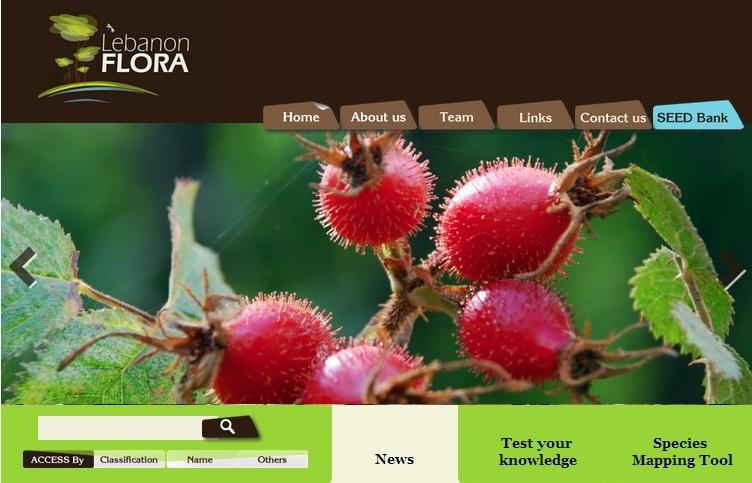 Untitled flora website