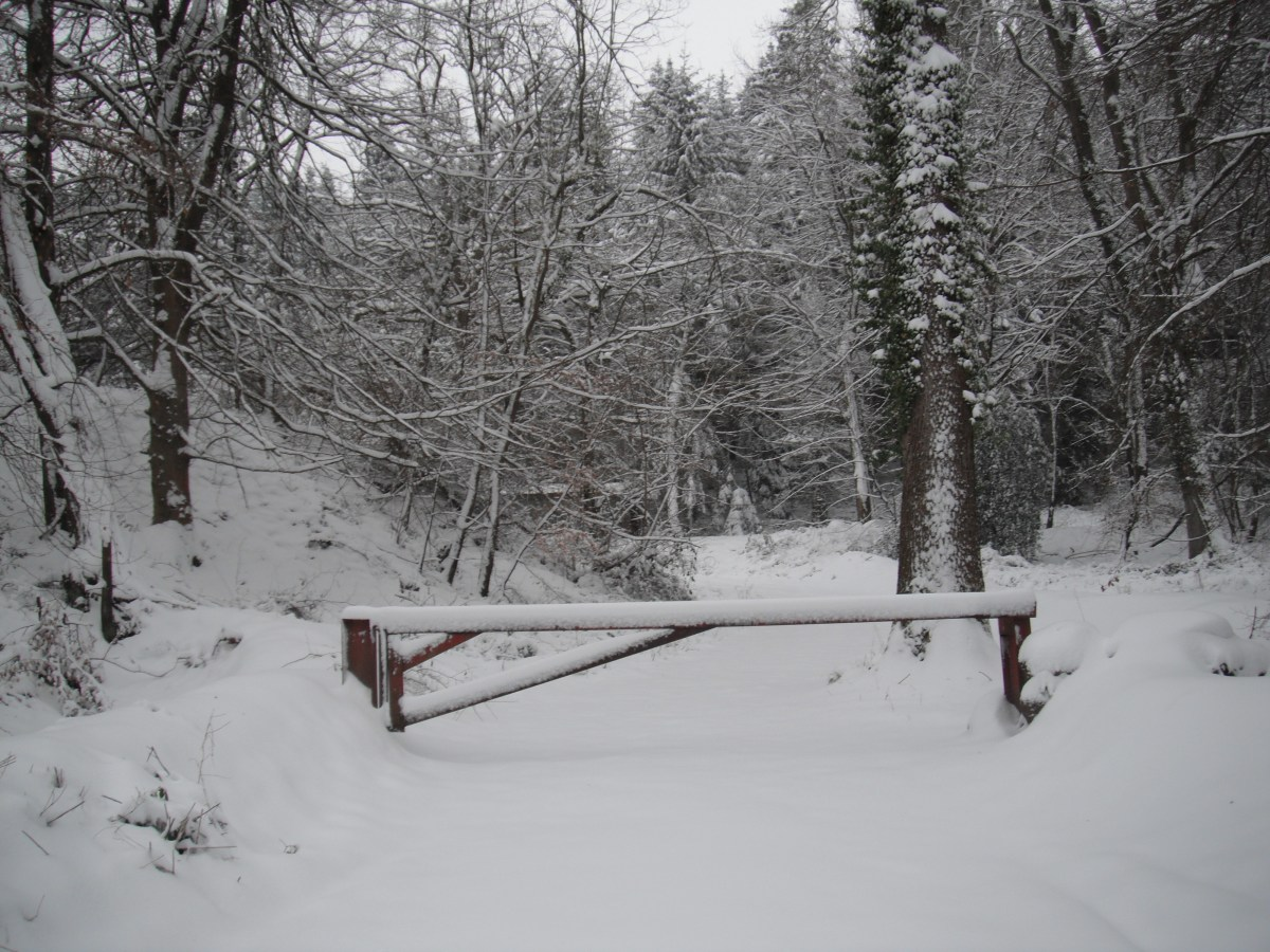 Entrance barrier in the snow