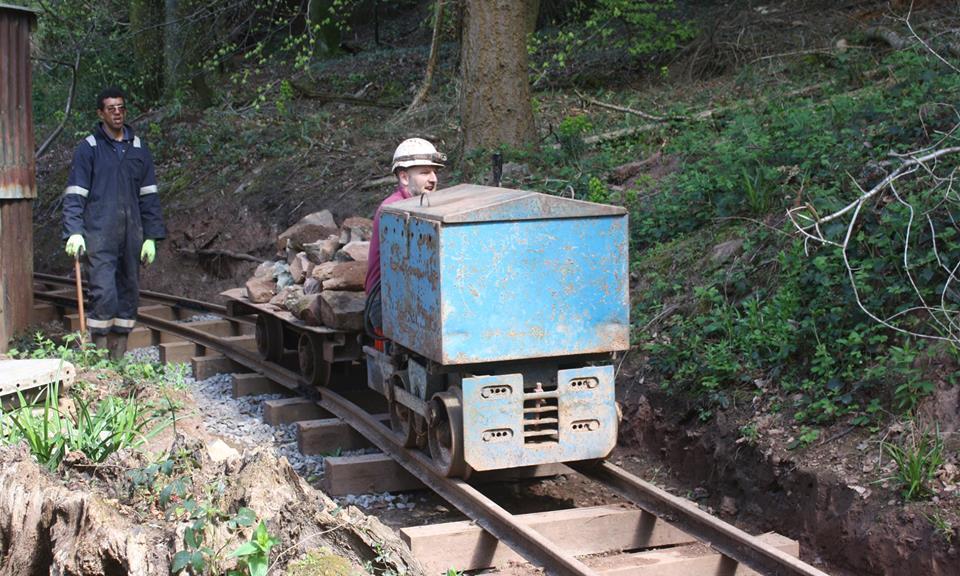 WR5 hauling logs