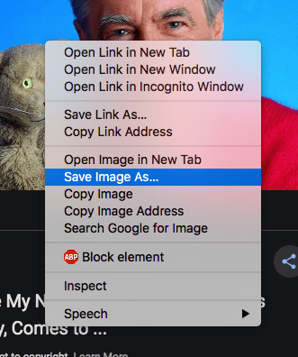 The context menu with the Save Image As prompt.