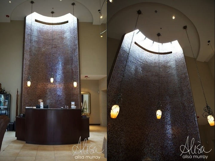Dr Shel Luxury Wellness and Medical Spa - Water Feature