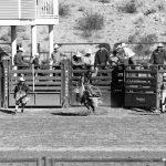 High School Rodeo Held in Alamo