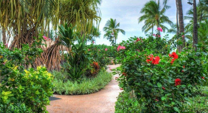Leadership in Disabilities & Achievement of Hawaii